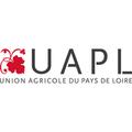 CAPL/ UAPL