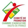 COMITÉ DE PROMOTION