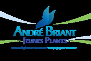 ANDRE BRIANT JEUNES PLANTS